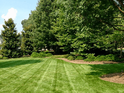 Mosey Landcapes Landscaping Carlisle PA Company and Services